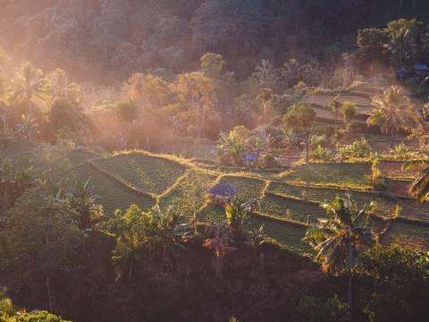 Landscape of Lombok