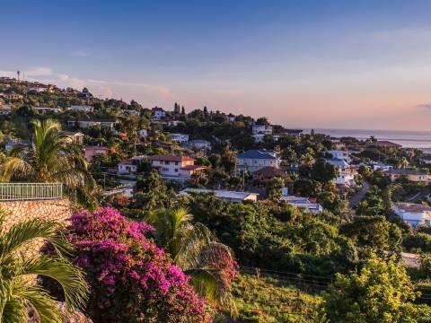 Landscape of Jamaica
