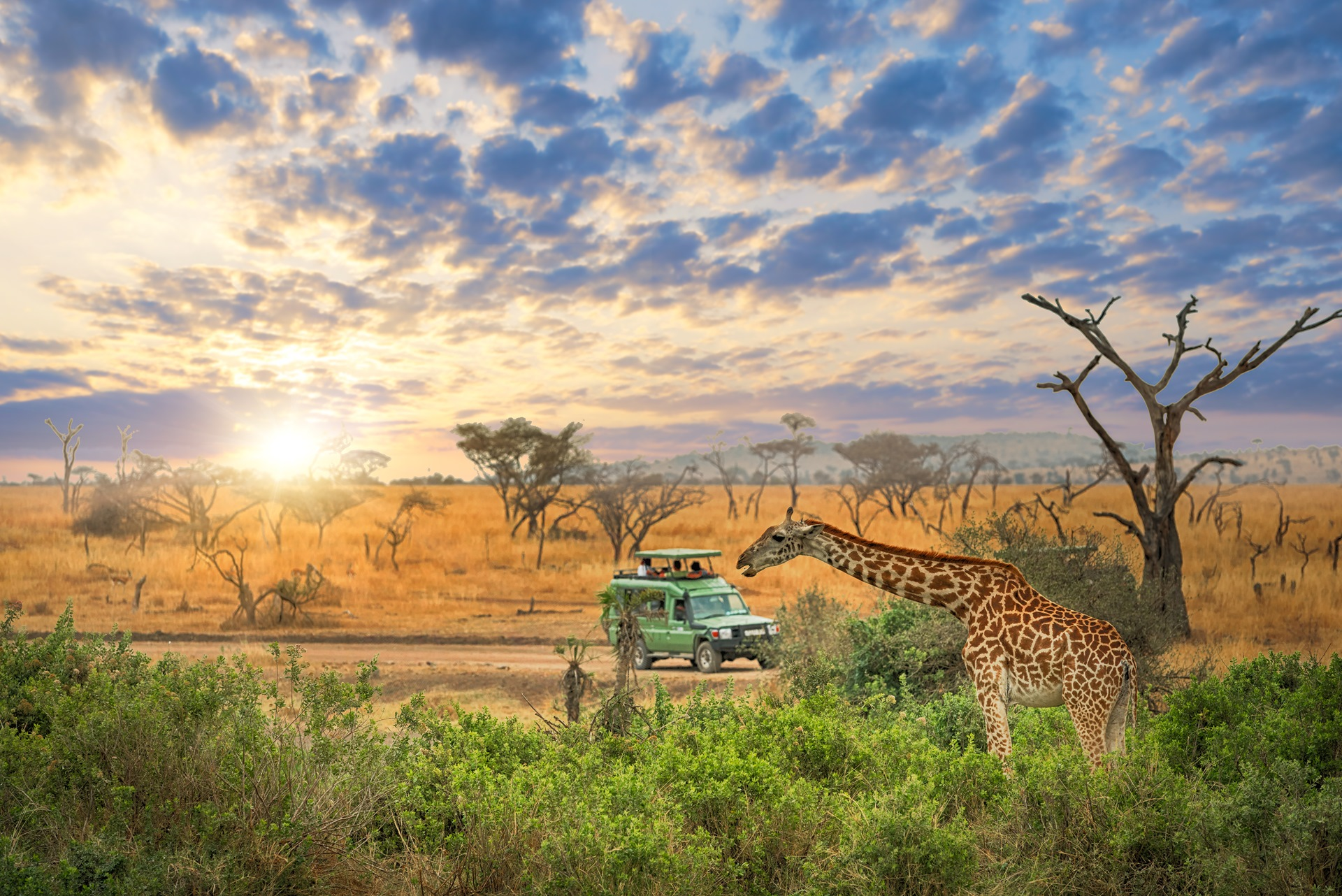25 of africas best places to visit