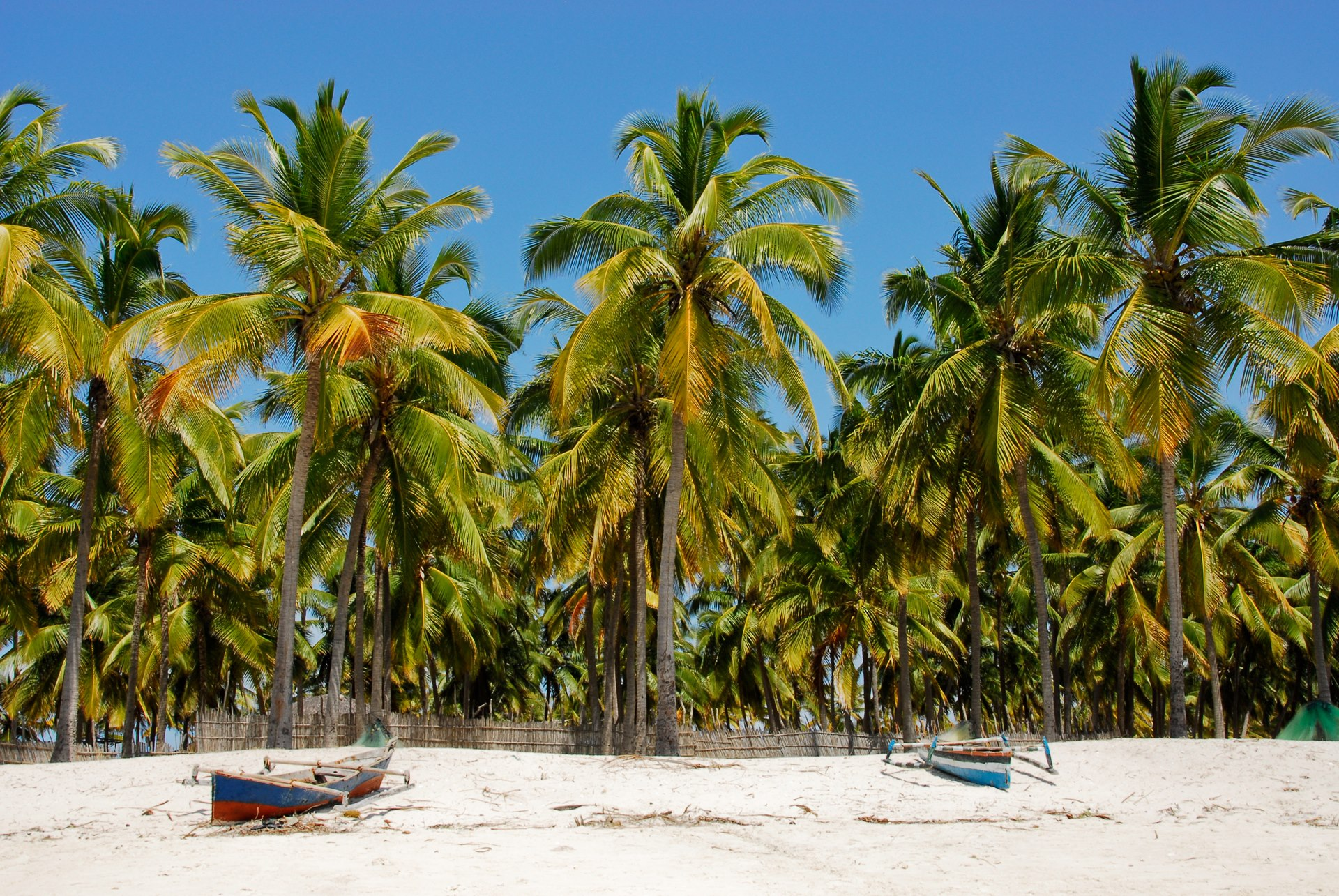 Reasons to visit in Momzambique