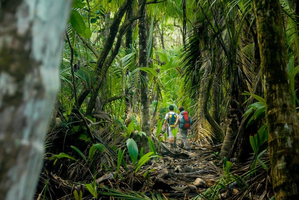 Must-trek Costa Rican hiking trails
