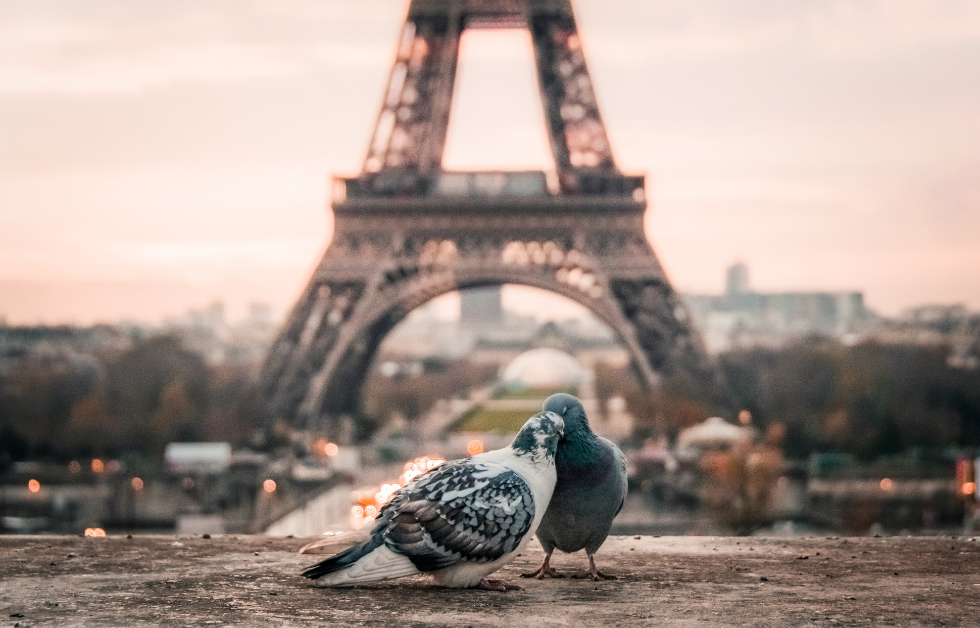 France is filled with romance and you could get married ther