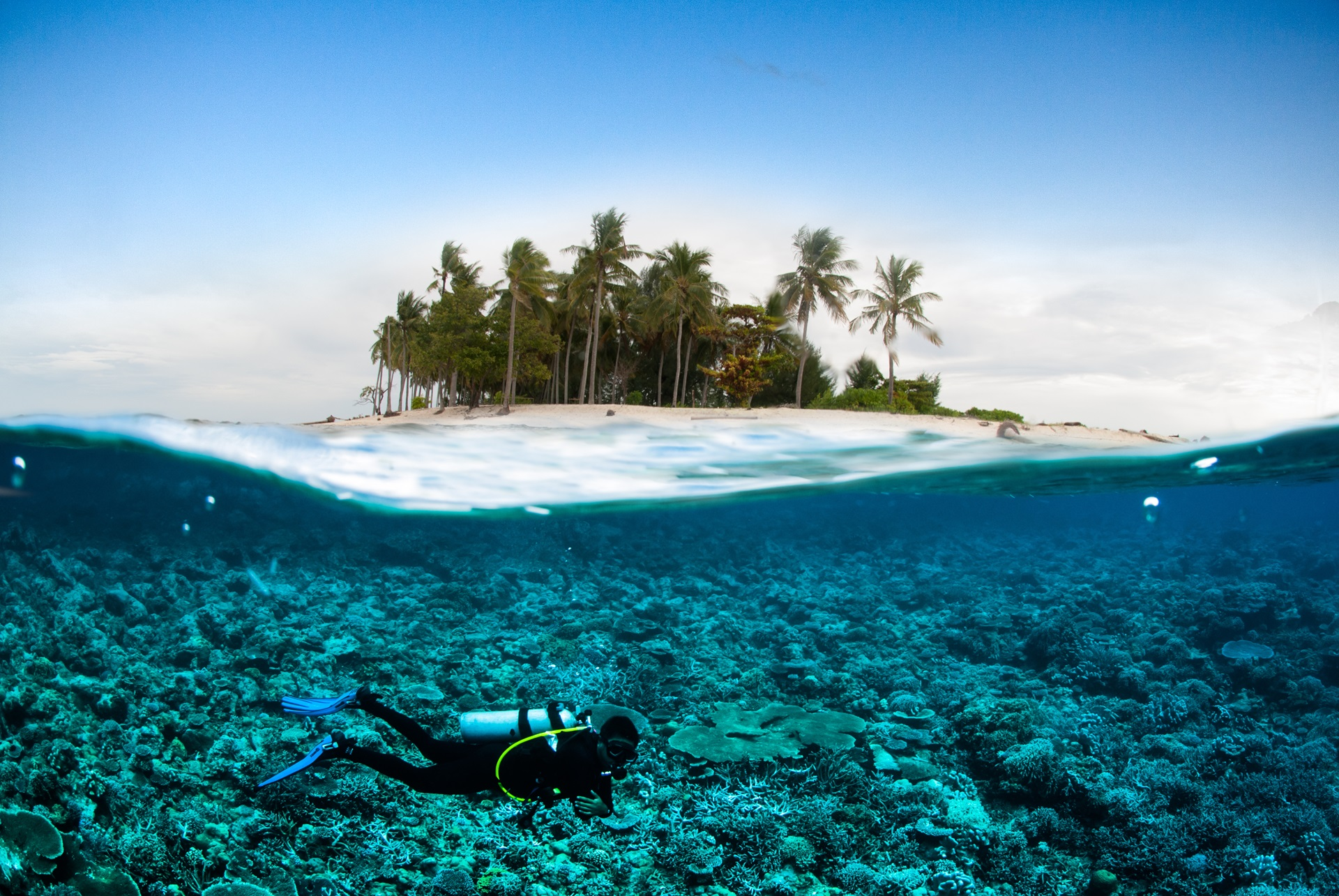 scuba diving diver below coconut island bali lombok sulawesi